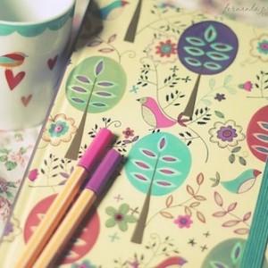 Favim.com-birds-cute-diary-fernanda-prestes-flowers-214063.jpg